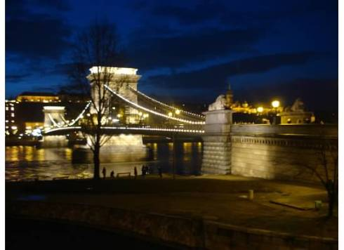 Lion Bridge at Night